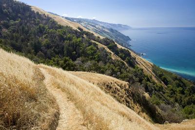 Coastal Trail, along the Pacific Ocean.-Kodiak Greenwood-Photographic Print