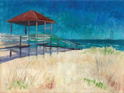 Coastal-Todd Williams-Art Print
