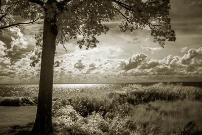 Cobb Island Afternoon I-Alan Hausenflock-Photo