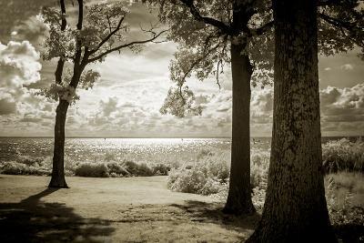 Cobb Island Afternoon II-Alan Hausenflock-Photo
