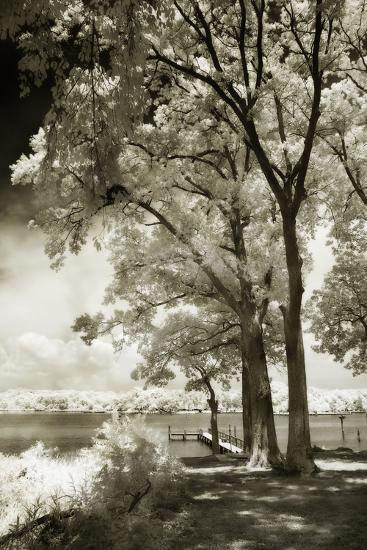 Cobb Island III-Alan Hausenflock-Photographic Print