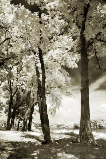 Cobb Island IV-Alan Hausenflock-Photographic Print