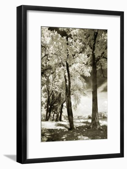 Cobb Island IV-Alan Hausenflock-Framed Photographic Print