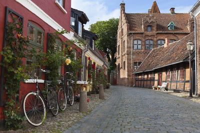 Cobblestone Alley in the Old Town, Ribe, Jutland, Denmark, Scandinavia, Europe-Stuart Black-Photographic Print