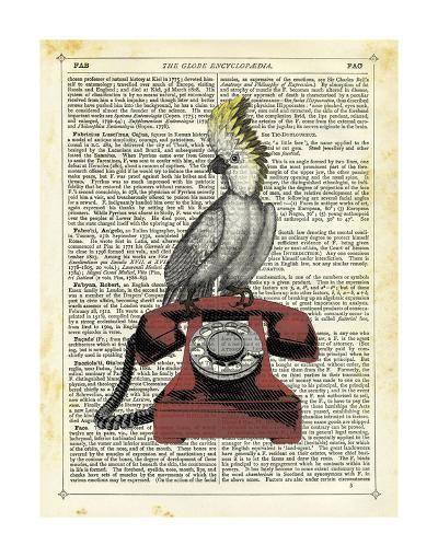 Cocatoo on Telephone-Marion Mcconaghie-Art Print