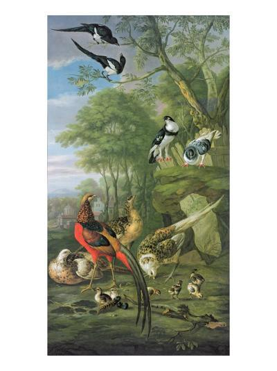 Cock Pheasant, Hen Pheasant and Chicks and Other Birds in a Classical Landscape-Pieter Casteels-Giclee Print