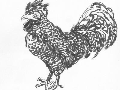 Cock Sketch-jim80-Art Print