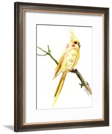 Cockatiel 2-Suren Nersisyan-Framed Art Print