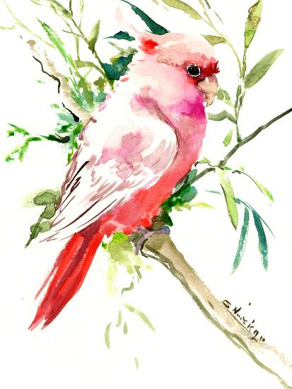 Cockatoo 1-Suren Nersisyan-Art Print