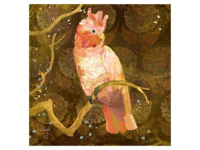 Cockatoo--Art Print