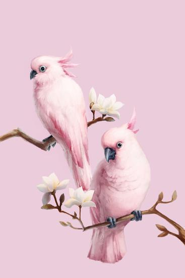 Cockatoos and Magnolia-BJI/Blue Jean Images-Photographic Print