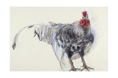 Cockerel, 2008-Lara Scouller-Giclee Print