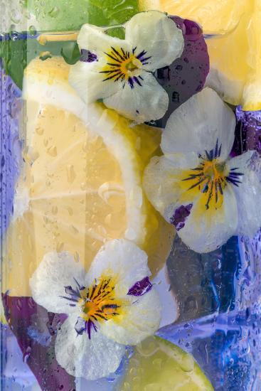 Cocktail Drinks Decorated with Lemon and Edible Violet Flowers- Anyka-Photographic Print