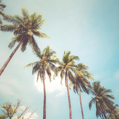 Coconut Palm Tree on Tropical Beach in Summer - Vintage Colour Effect-jakkapan-Art Print