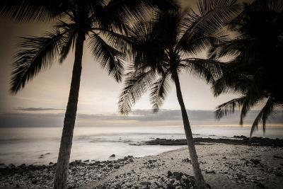 Coconut Palms and Surf at Dusk, Kailua-Kona, Hawaii, Usa-Russ Bishop-Photographic Print
