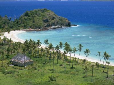https://imgc.artprintimages.com/img/print/coconut-plantation-and-old-farmhouse-beside-coral-sand-bay-mana-island-mamanuca-group-fiji_u-l-p1sa2d0.jpg?p=0