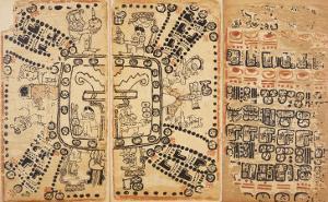 Codex Cortesianus