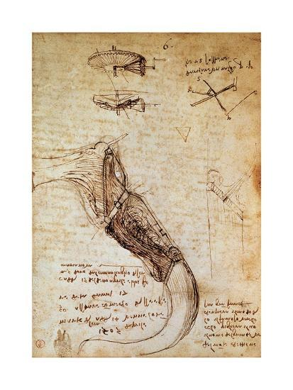 Codex on the Flight of Birds-Leonardo da Vinci-Giclee Print