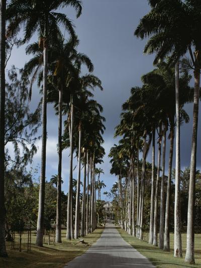 Codrington College, Barbados--Photographic Print