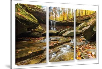 Blue Hen Falls 3, 3 Piece Gallery-Wrapped Canvas Set