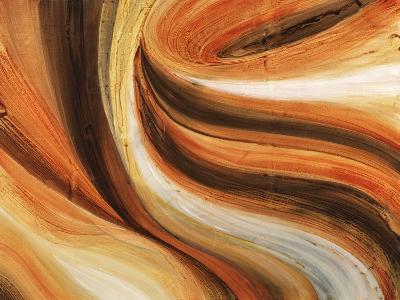 Coffee Bar-Kari Taylor-Giclee Print