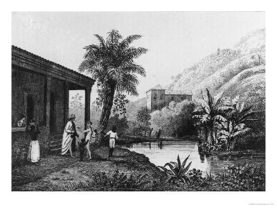 Coffee Plantation, from Bresil, Columbie et Guyanes by Ferdinand Denis and Cesar Famin 1837--Giclee Print