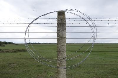 Coiled Barb Wire on a Fence Post-Tyrone Turner-Photographic Print