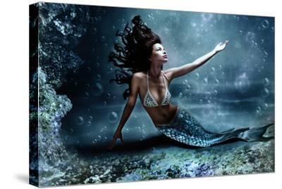 Mermaid Underwater 24x36 Framed Gallery Wrapped Stretched Canvas New Jersey Ocean City