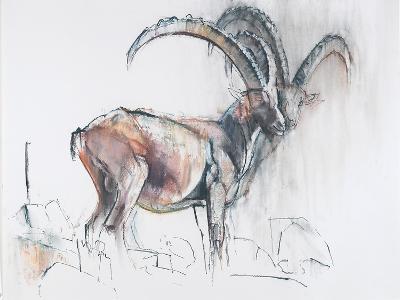 Col Di Vermianaz-Mark Adlington-Giclee Print