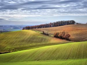Pastoral Countryside XX by Colby Chester