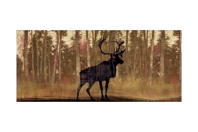 Cold Pine-Andrew Michaels-Art Print