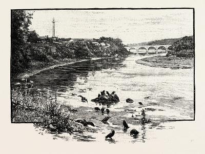 Coldstream Bridge--Giclee Print