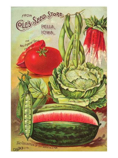 Cole's Seed Store Pella Iowa--Art Print