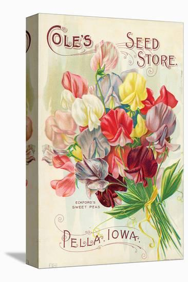 Cole's Seed Store Pella Iowa--Stretched Canvas Print