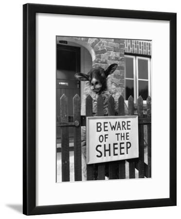 Sheep Guard