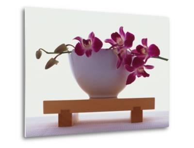 Magenta Orchids in White Bowl