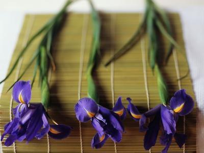 Purple Irises on a Bamboo Mat