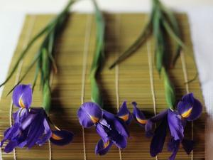 Purple Irises on a Bamboo Mat by Colin Anderson