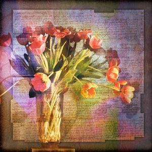Vase of Tulips and Text by Colin Anderson