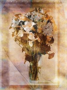 White Flowers in a Vase by Colin Anderson