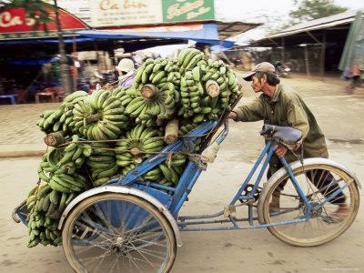 Man Transporting Bananas on Cyclo, Hue, Vietnam, Indochina, Southeast Asia, Asia