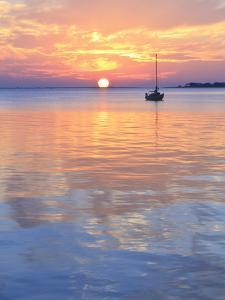 A Sailboat Silhouetted against a Brilliant Sunset in a Cove off Pensacola Bay, Florida by Colin D Young