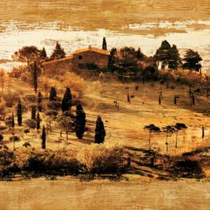 Tuscan Countryside II by Colin Floyd