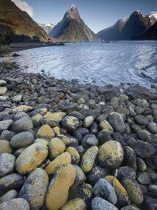 Mitre Peak in Summer, Milford Sound, Fiordland National Park, New Zealand by Colin Monteath/Minden Pictures