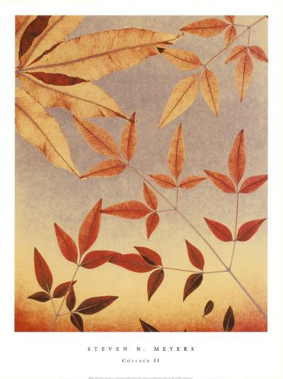 Collage II-Steven N^ Meyers-Art Print