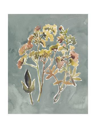 https://imgc.artprintimages.com/img/print/collected-florals-iv_u-l-q1e9t170.jpg?p=0