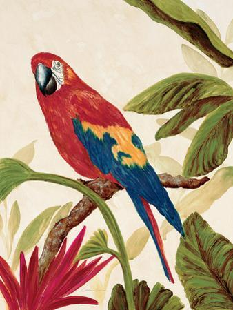 Tropical Red by Colleen Sarah