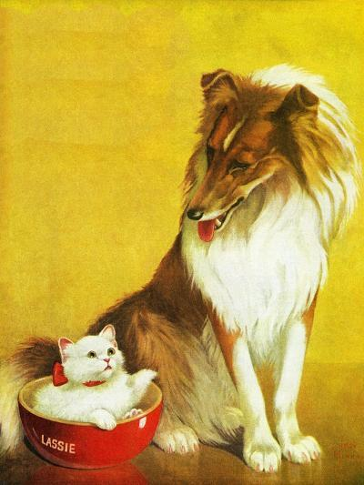 Collie and Kitten - Child Life-Jack Murray-Giclee Print