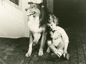 Collie Guards Sleeping Child