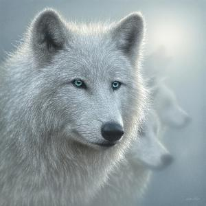 Arctic Wolves - Whiteout by Collin Bogle